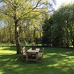 luxe vakantiehuis Drenthe direct aan bos