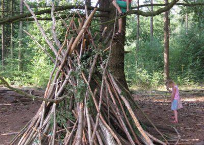 Bos - Klimbomen en Hutten bouwen 02