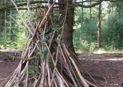 Bos - Klimbomen en Hutten bouwen 01