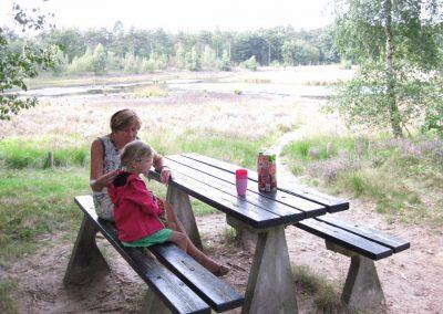 Bos - Picknicktafel bij tweede vennetje